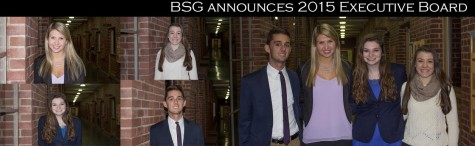 BSG announces 2015 Executive Board