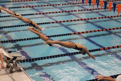 Swimming and diving hosts West Virginia, Bison Invite
