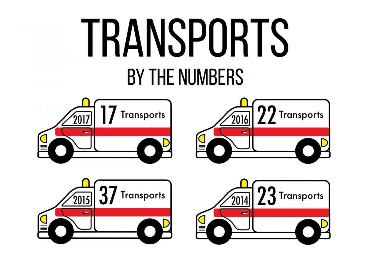 Alcohol related transports decreased by half since 2015