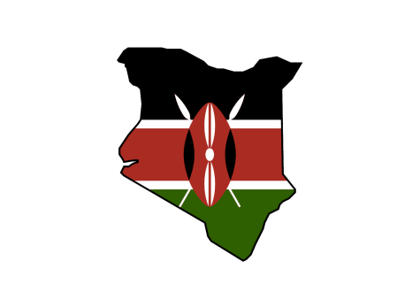 Kenya's second election fails to solve nation's divisions