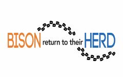 Homecoming Weekend 2017: Bison return to their herd