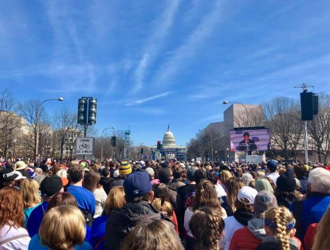 From D.C. to Lewisburg, the March for Our Lives