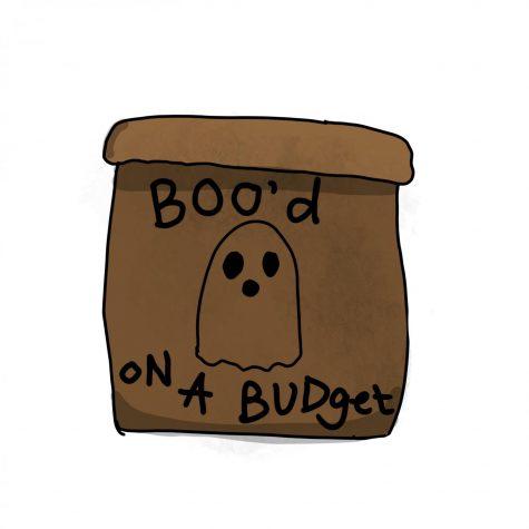 "How to create a cheap college ""Boo"" bag"