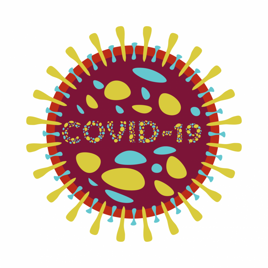 Checking in on the coronavirus