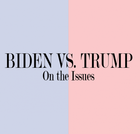Biden vs. Trump: On the issues