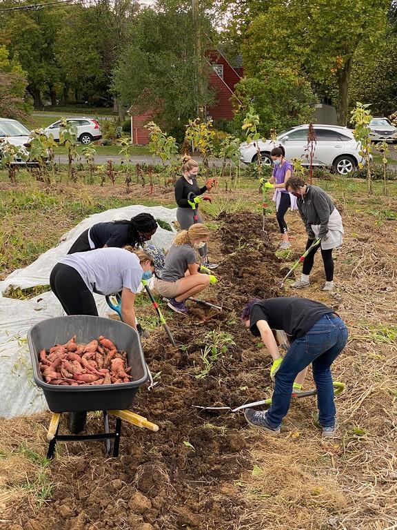 Lewisburg Community Garden and Bucknell Farm spotlight