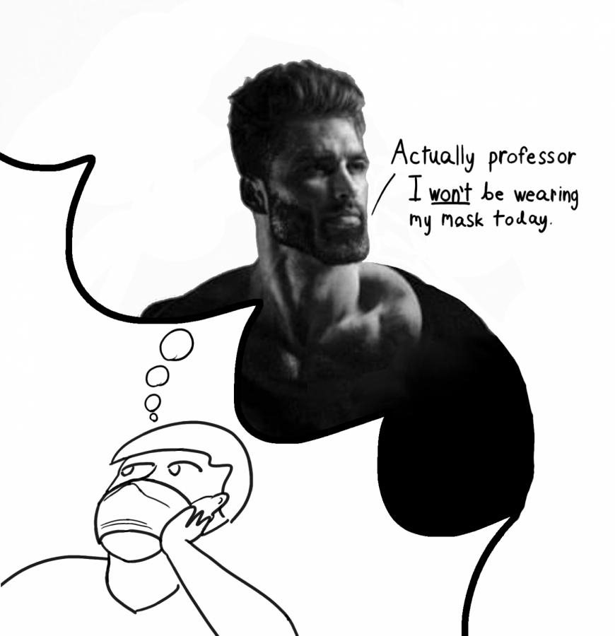 Journal entry of an anti-masker