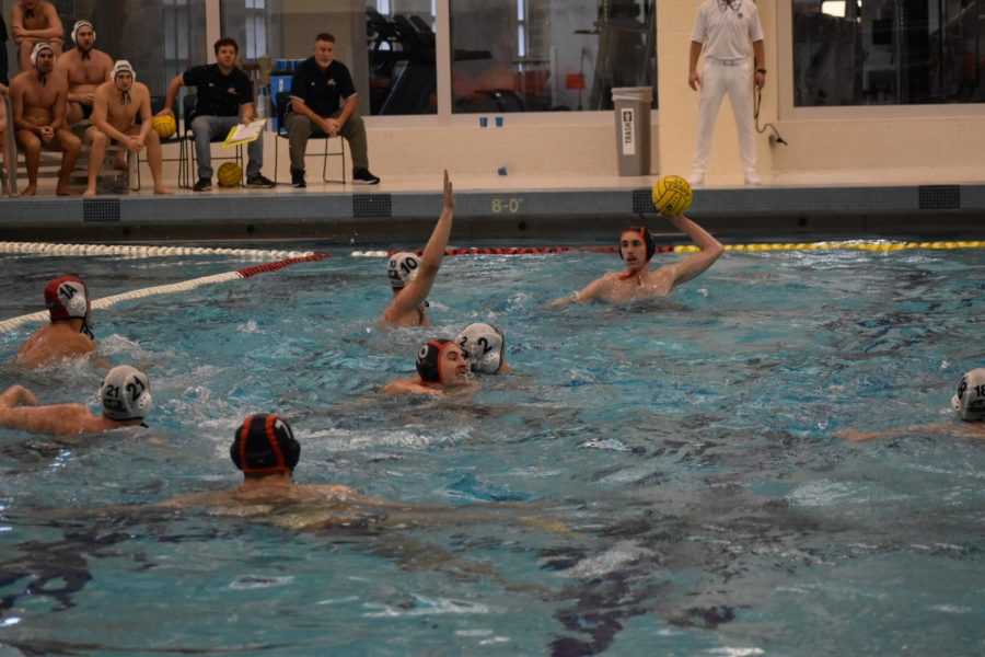 Bison Men's Water Polo look to put together another great season