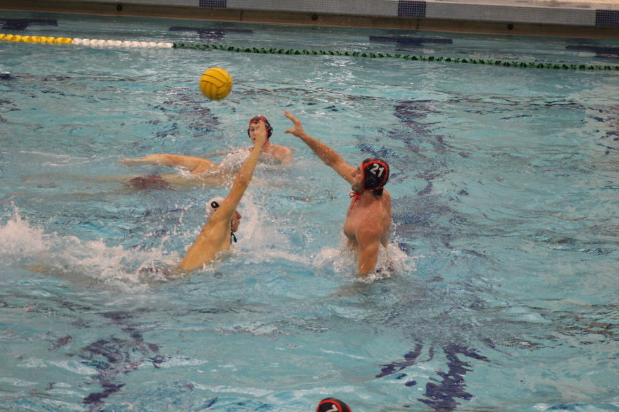 Bison Men's Water Polo has a challenging weekend